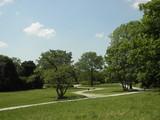 Deserted park in Poznan