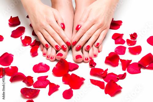 Foto op Canvas Manicure Stopy i dłonie otoczone płatkami róż
