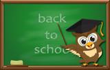 cartoon wise Owl with chalkboard