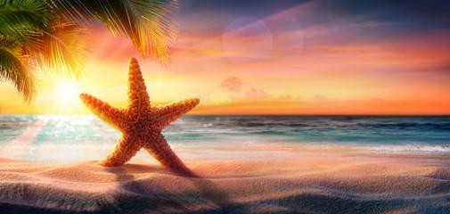Fototapeta rozgwiazda na pisku plaży