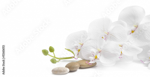 Fototapeta Spa white orchid with massage stones