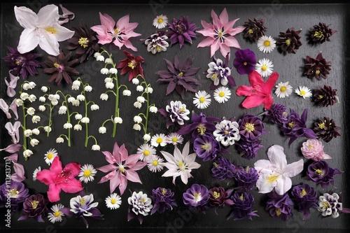 Aluminium Azalea Flowers.