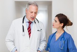 Senior doctor and nurse portrait talking