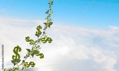 Zdjęcia na płótnie, fototapety, obrazy : Grow your income