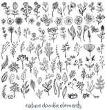 Doodle Sketch nature collection of elements