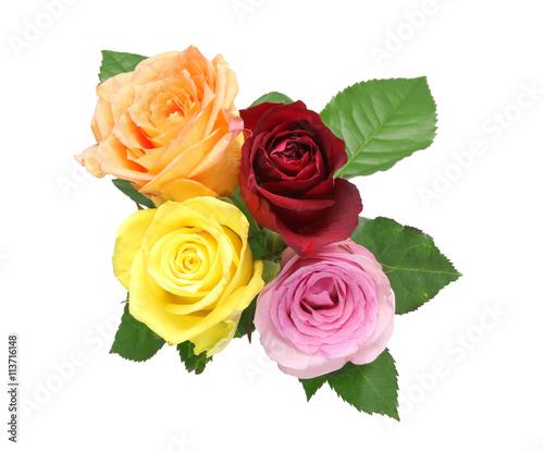 Zdjęcia na płótnie, fototapety, obrazy : 薔薇