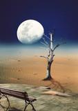 Paisagem ao Luar
