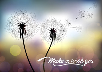 Dandelions on a blurred background. Hand drawn lettering make a wish you. Vector illustration made with a gradient mesh.