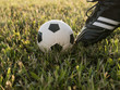 Quadro Soccer shoes and football on the green grass. Outdoor. Football or soccer concept