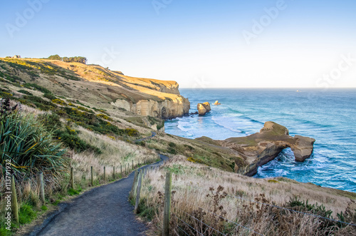 Pathway down to the Tunnel Beach which is located at Dunedin,New Zealand Poster