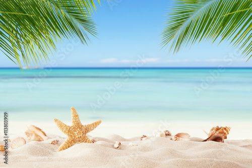 Fototapeta Summer sandy beach with blur ocean on background