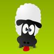 Schaf strekt die Zunge raus