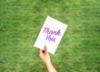 Thank you on card hand holding with blurred grass background