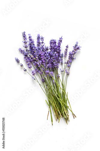 Papiers peints Lavande Lavender flowers on white background