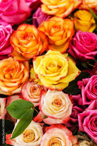 Zdjęcia na płótnie, fototapety, obrazy : nice roses
