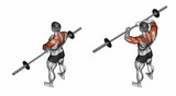 Vertical rods with the rod. Exercising for bodybuilding. Target muscles are marked in red. Initial and final steps. 3D illustration - 113879322