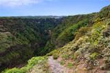 Barranco de Ruiz is beautiful ravine of Tenerife for trekking. Canary Islands, Spain.