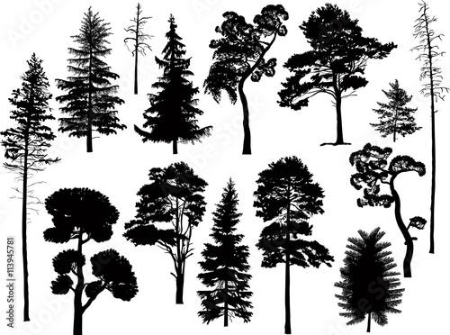 set of fourteen black trees