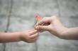 ピンクの花を手渡す親子の手