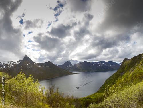 Poster Insel Senja in Norwegen,Troms