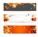 Set of banners with maple leaves