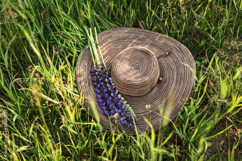 beautiful hat with lupine on grass Poster