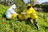 apicultori - 114033928