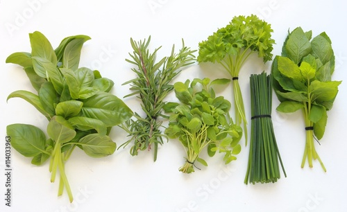 Fresh herbs for cooking isolated on white background