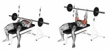 Close-Grip Barbell Bench Press. Target muscles are marked in red. Initial and final steps. 3D illustration