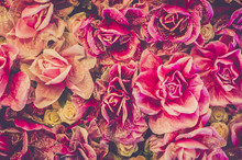 Bouquet of roses background. Retro filter