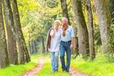 Älteres Paar macht Spaziergang im Wald - 114092329