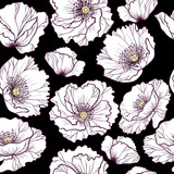 White poppy flowers  on a black background vector seamless pattern