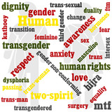 a word graphic with a transgendered theme