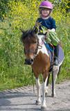 décorer son poney avec des fleurs - 114302977