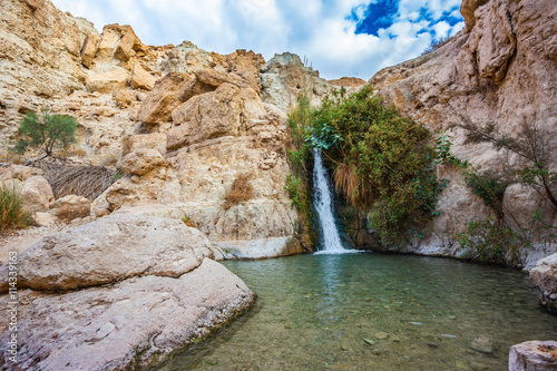 Thel falls among stones of the dried-up desert