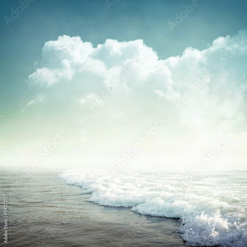 Fototapeta tropical background