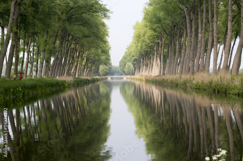Poster Water Channel and Trees