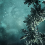 tropical background - 114375140