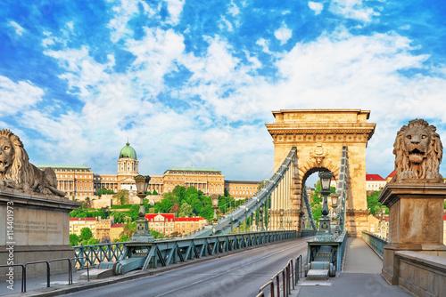 Staande foto Rome Szechenyi Chain Bridge-one of the most beautiful bridges of Buda