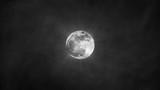 Sfondo nebbia con luna
