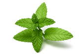 peppermint leaves - 114449187