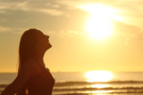 Profile of woman breathing fresh air at sunset - Fine Art prints