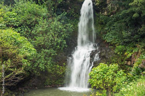 Close up of a waterfall in the Kohala area. This area is known for its many hidden waterfalls. The draught of the waterfall causes some motion blur in the foliage.