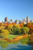 Fototapety Central Park Autumn