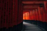 Fushimi Inari, Kyoto, Japan 伏見稲荷大社 千本鳥居