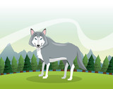 Wolf icon. Landscape background. Vector graphic