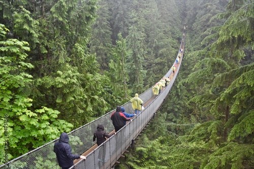 Fotobehang Canada Capilano Suspension Bridge