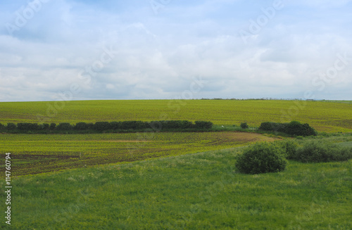 Poster English country landscape