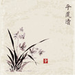 Wild orchid on meadow. Traditional Japanese ink painting sumi-e on white background. Contains hieroglyphs - eternity, freedom, happiness, beauty