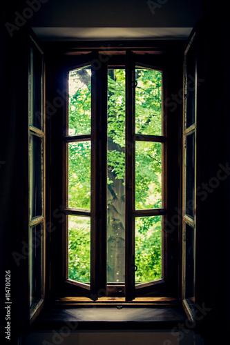 Okno z widokiem na las - 114780126
